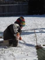 Interesting snowy sticks.